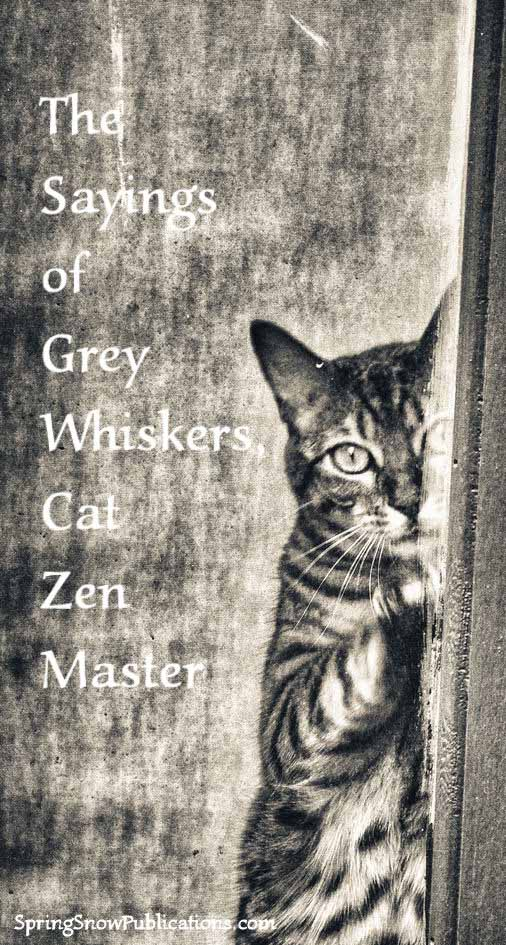 The Sayings of Grey Whiskers