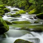Tao Te Ching for Writers: Peace Flows In