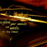 Transforming Wounds into Words of Encouragement