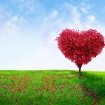 Psalms and Creative Writing: God as Healer
