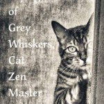 The Sayings of Grey Whiskers, Cat Zen Master